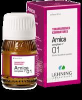 Lehning Arnica Complexe N° 1 Solution Buvable En Gouttes Fl/30ml à CUISERY