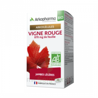 Arkogélules Vigne Rouge Bio Gélules Fl/45 à CUISERY
