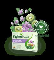 Phytoxil Transit Comprimés B/20 à CUISERY