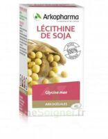 Arkogélules Lécithine de soja Caps Fl/45 à CUISERY