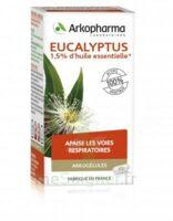 Arkogélules Eucalyptus Gélules Fl/45 à CUISERY