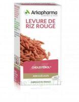 Arkogélules Levure De Riz Rouge Gélules Fl/150 à CUISERY