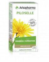 Arkogélules Piloselle Gélules Fl/45 à CUISERY