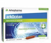 Arkocean Magnesium Marin Solution buvable caramel 20 Ampoules/10ml à CUISERY