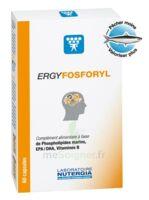 Ergyfosforyl Caps B/60 à CUISERY