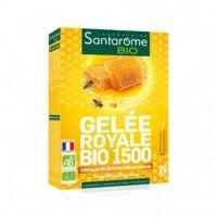 Santarome Bio Gelée Royale 1500 Solution Buvable 20 Ampoules/10ml à CUISERY