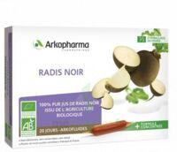 Arkofluide Bio Ultraextract Radis noir Solution buvable 20 Ampoules/10ml à CUISERY