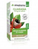 Arkogélules Guarana Bio Gélules Fl/45 à CUISERY