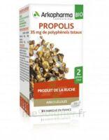 Arkogélules Propolis Bio Gélules Fl/45 à CUISERY