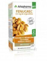 Arkogélules Fenugrec Bio Gélules Fl/40 à CUISERY