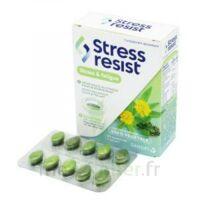 Stress Resist Comprimés Stress & Fatigue B/30 à CUISERY