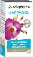 ARKOGELULES HARPAGOPHYTON Gélules Fl/150 à CUISERY