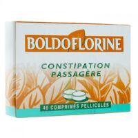 BOLDOFLORINE 1 Cpr pell constipation passagère B/40 à CUISERY