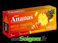 MILICAL ANANAS BRULEUR DE GRAISSE à CUISERY