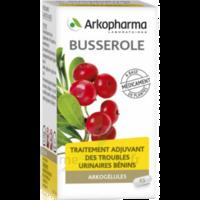 Arkogelules Busserole Gélules Fl/45 à CUISERY