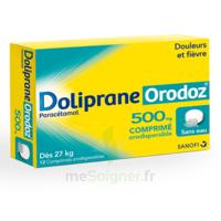 DOLIPRANEORODOZ 500 mg, comprimé orodispersible à CUISERY