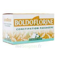 BOLDOFLORINE, mélange de plantes pour tisane en sachet-dose B/24 à CUISERY