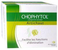 Chophytol Cpr Enr 6plaq/30 à CUISERY
