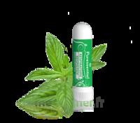 PURESSENTIEL RESPIRATOIRE Inhalation nasal 19 huiles essentielles à CUISERY