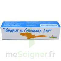 CALENDULA LHF POM T/20G à CUISERY