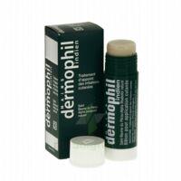 Dermophil Indien Pom Stick Girex/30g à CUISERY