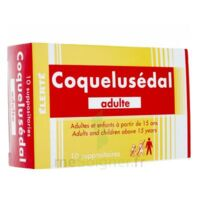 COQUELUSEDAL ADULTES, suppositoire à CUISERY