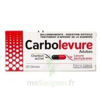 Carbolevure Gélules Adulte Plq/30 à CUISERY