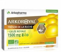Arkoroyal Gelée Royale Bio 1500 Mg Solution Buvable 20 Ampoules/10ml à CUISERY