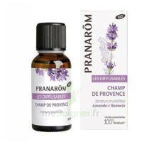 Les Diffusables Champs de Provence à CUISERY