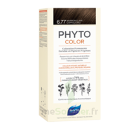 Phytocolor Kit Coloration Permanente 6.77 Marron Clair Cappuccino à CUISERY