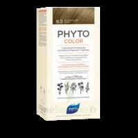 Phytocolor Kit coloration permanente 8.3 Blond clair doré à CUISERY