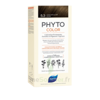 Phytocolor Kit Coloration Permanente 5.3 Châtain Clair Doré à CUISERY