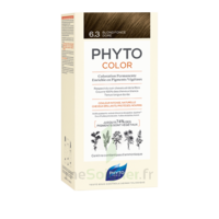 Phytocolor Kit coloration permanente 6.3 Blond foncé doré à CUISERY