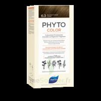 Phytocolor Kit Coloration Permanente 6.3 Blond Foncé Doré à CUISERY
