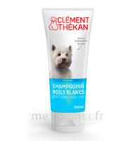 Clément Thékan Shampooing poils blancs T/200ml à CUISERY