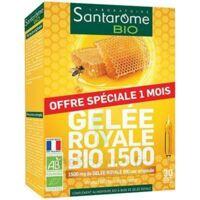Santarome Bio Gelée Royale Solution Buvable 30 Ampoules/10ml à CUISERY