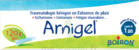 Boiron Arnigel Gel T/120g à CUISERY