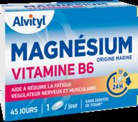 Govital Magnésium Vitamine B6 Comprimés B/45 à CUISERY