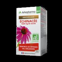 Arkogelules Echinacée Bio Gélules Fl/45 à CUISERY