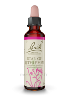 Fleurs De Bach® Original Star Of Bethlehem - 20 Ml à CUISERY