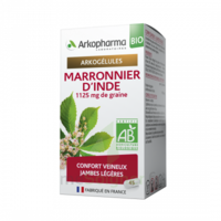 Arkogélules Marronnier D'inde Bio Gélules Fl/45 à CUISERY