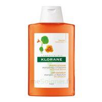 Klorane Capucine Shampooing 200ml à CUISERY
