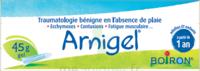 Boiron Arnigel Gel T/45g à CUISERY